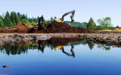 Salmon Creek Estuary Restoration
